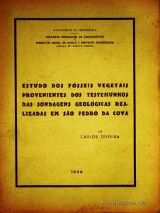 Estudo dos Fósseis Vegetais Provenientes dos Testemunhos das Sondagens Geológicas Realizadas em são Pedro da Cova