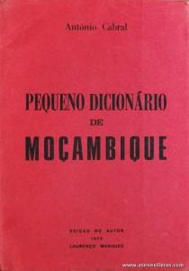 Pequeno Dicionário de Moçambique