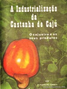 A Industrialização da Castanha de Cajú