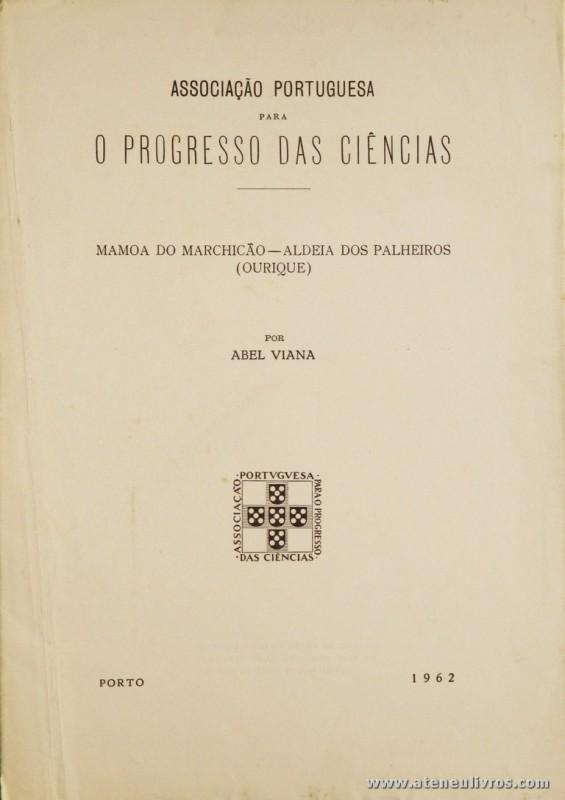 Mamoa do Marchicão - Aldeia dos Palheiros (Ourique)